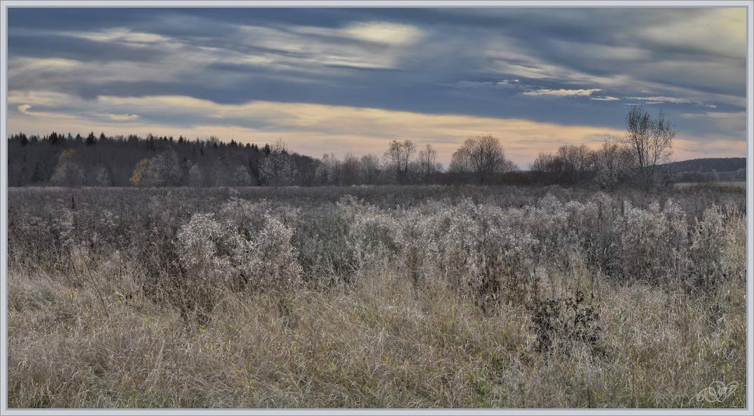 "фото ""Поздняя осень"" метки: пейзаж, Вологодчина, облака, осень"