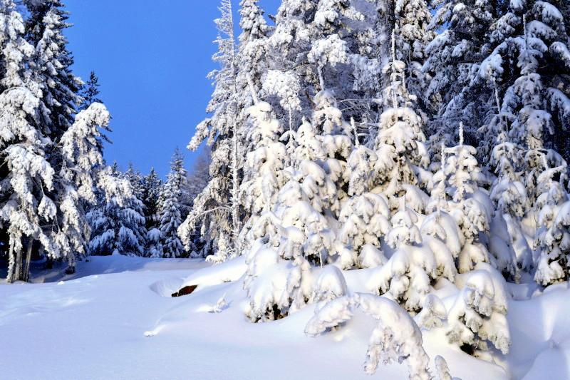 """фото """"Зимний пейзаж."""" метки: пейзаж, природа, зима., пейзаж."""