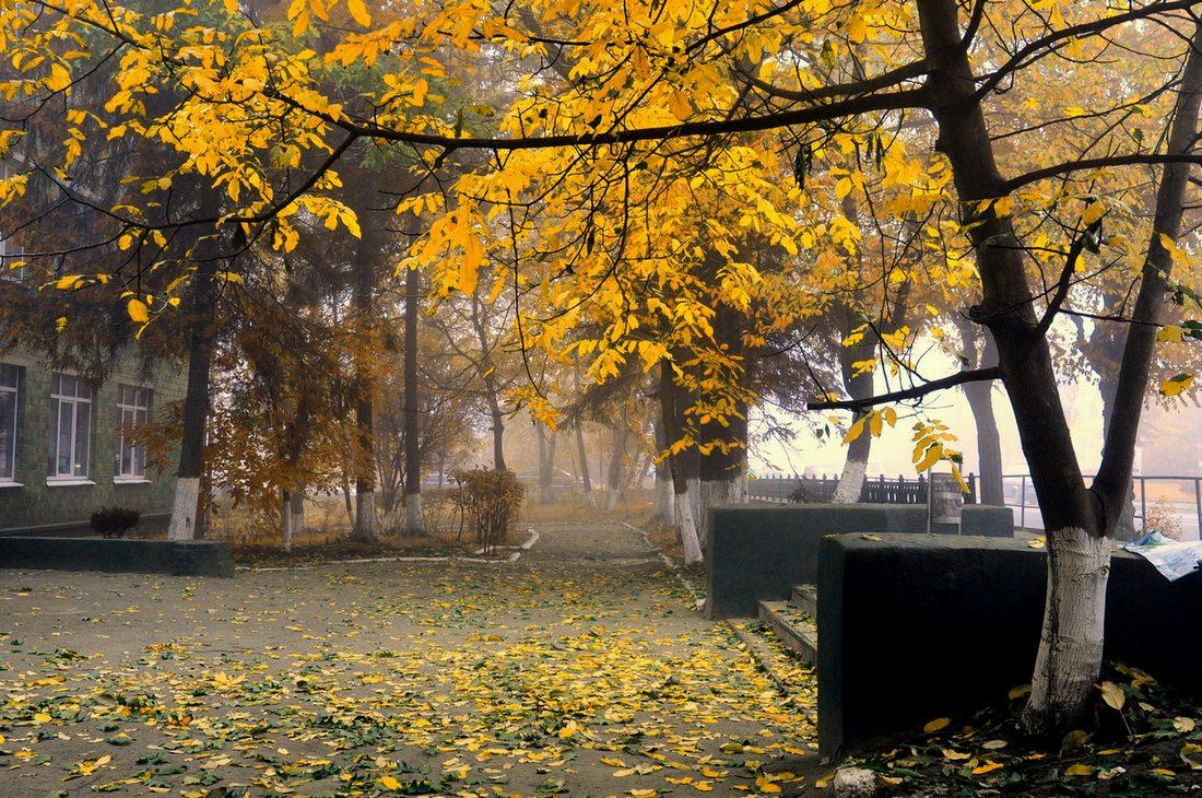 "фото ""Осеннее настроение"" метки: ,"
