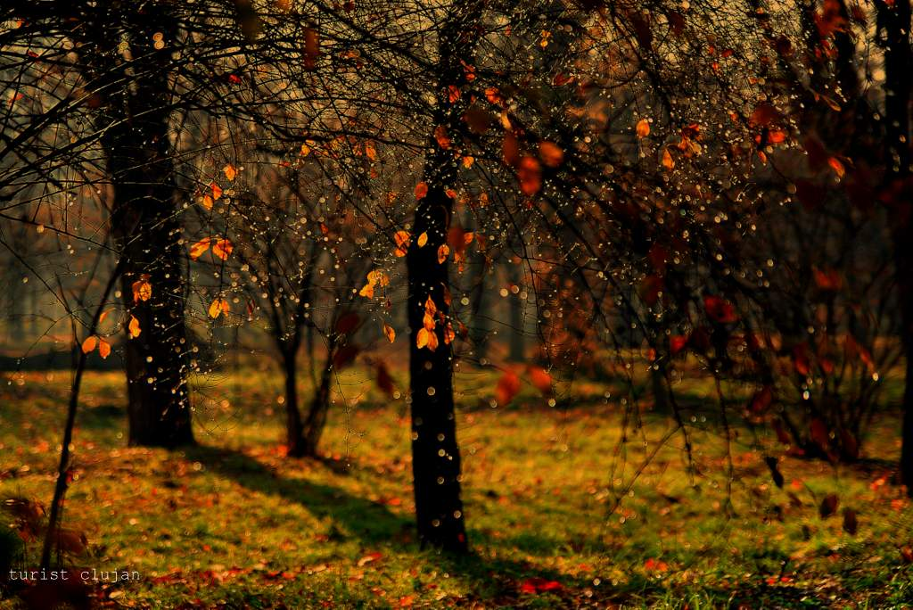 "фото ""melancolie"" метки: пейзаж,"