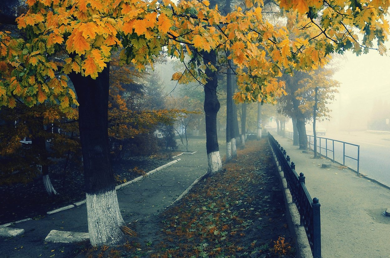 "фото ""Осеняя грусть"" метки: пейзаж, Европа"