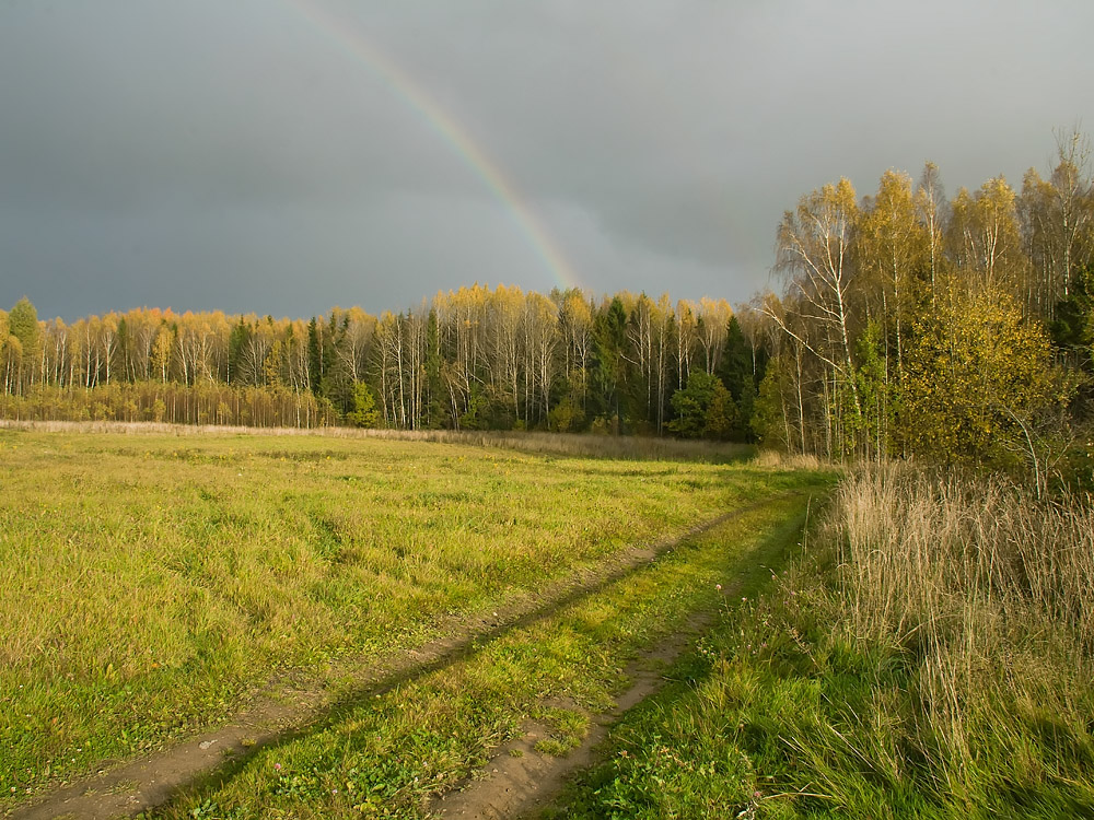 "photo ""***"" tags: landscape, autumn, forest, rainbow, Беларусь"