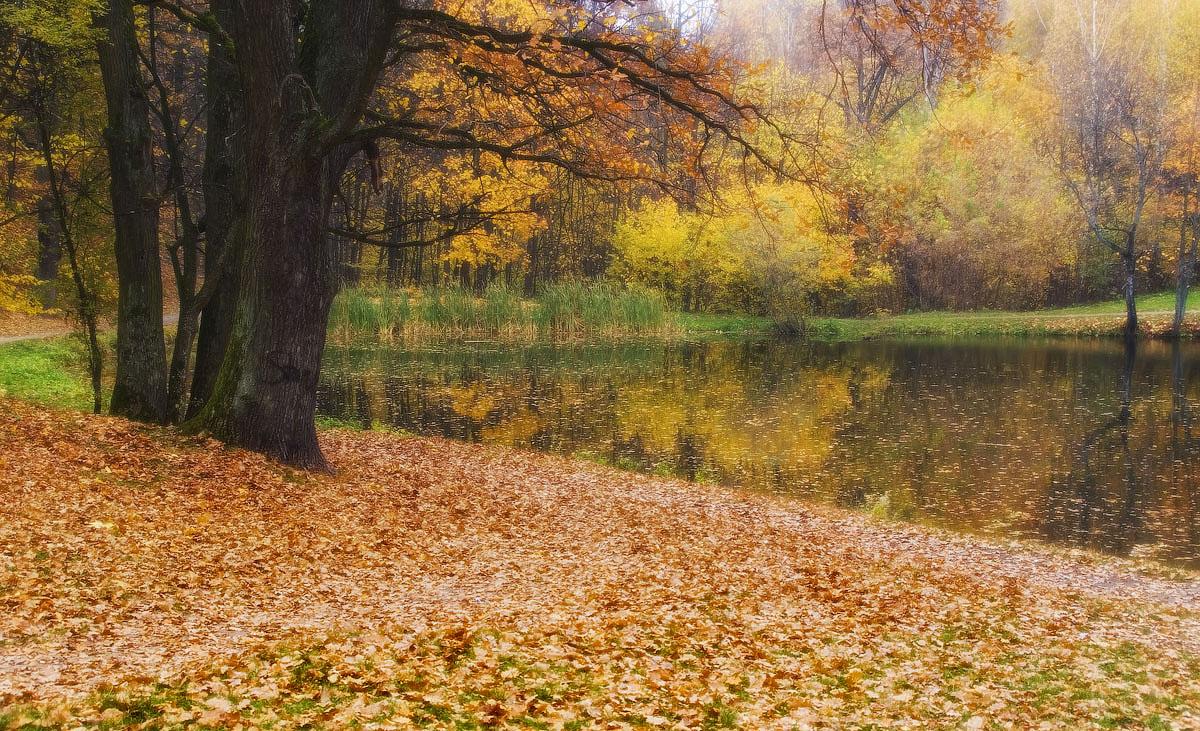 """фото """"На осень глядя"""" метки: ,"""