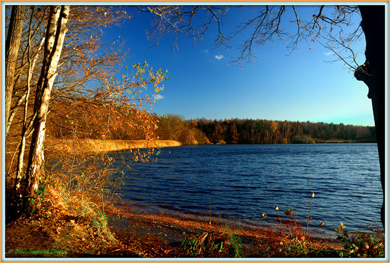 "фото ""An evening at the lake..."" метки: пейзаж, Prinsenpark, Retie"