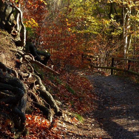 "photo ""+++"" tags: landscape, nature, travel,"