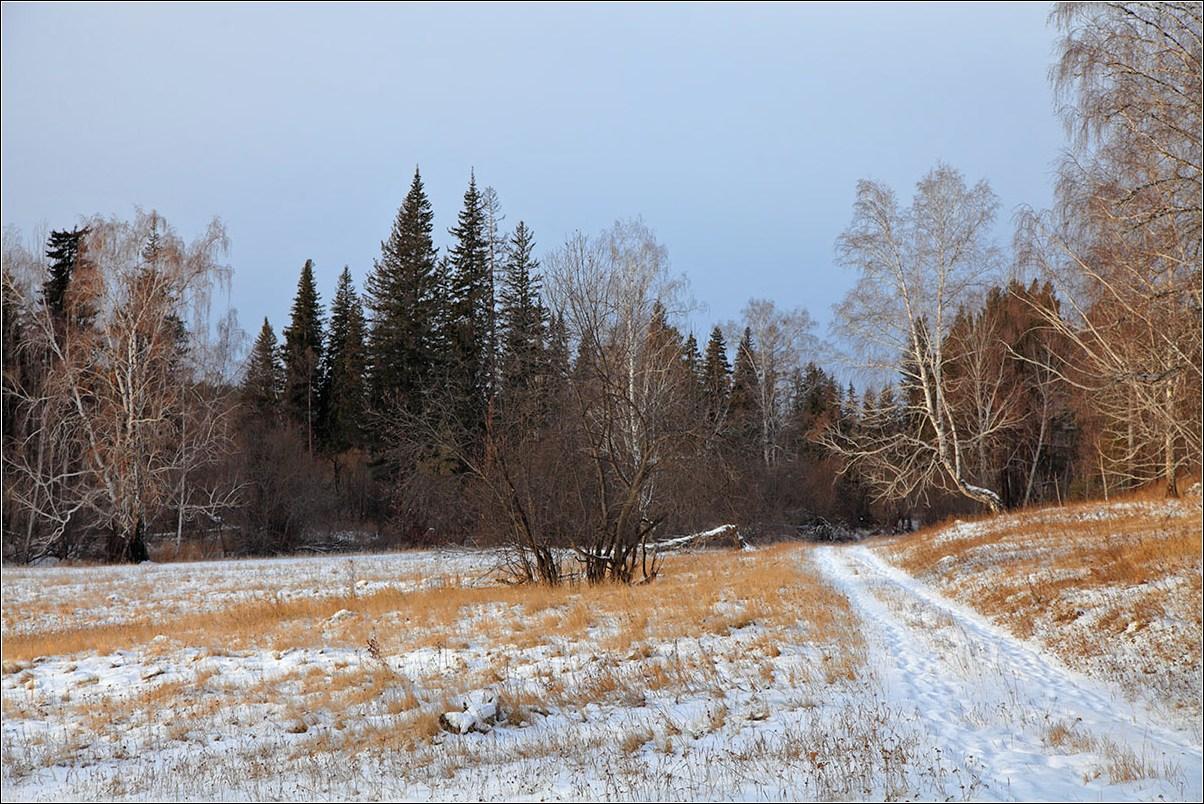 "фото ""Еще не зима, но уже не осень..."" метки: пейзаж,"