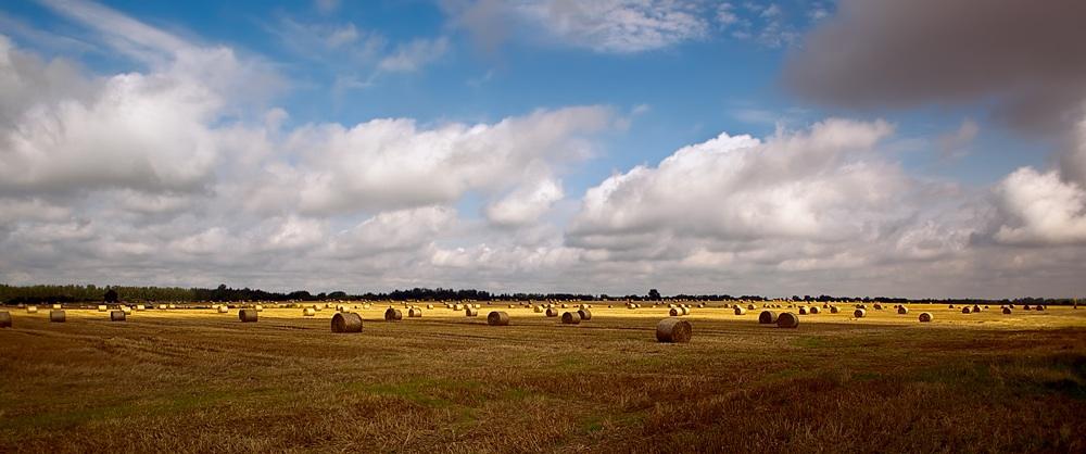 """фото """"Хорошо потрудились"""" метки: пейзаж, природа, небо, сено"""