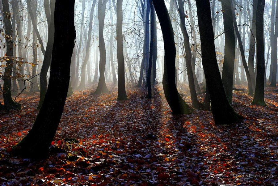 "фото ""fantomatici"" метки: пейзаж,"