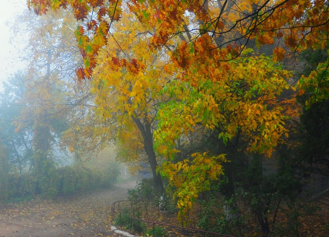 """фото """"Осенняя грусть-2"""" метки: пейзаж, Европа"""