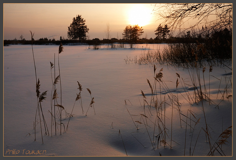 "photo ""Lozhkova Storozhka, Moscow region"" tags: , field, grass, snow, sunset, winter, Ложклова Сторожка"
