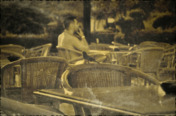 "фото ""одиночество"" метки: ,"