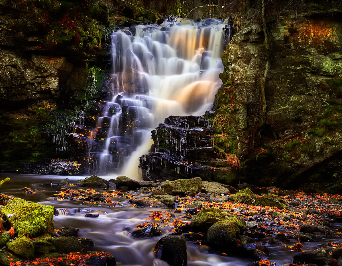 """фото """"***"""" метки: пейзаж, Европа, вода, лес, лето"""