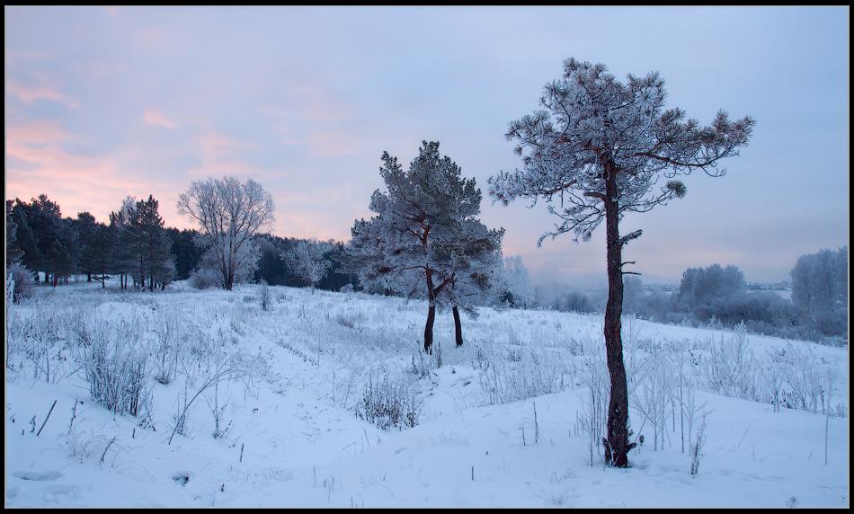 """фото """"Ноябрьское утро"""" метки: пейзаж,"""