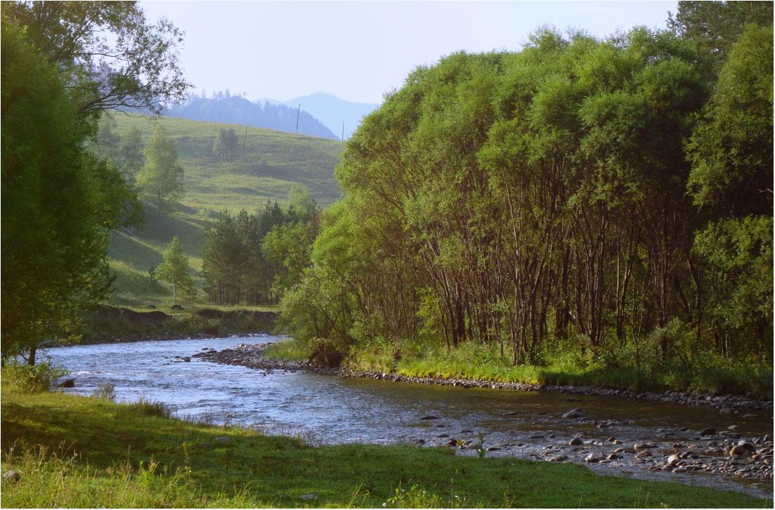 "фото ""***"" метки: пейзаж, лес, лето, река"