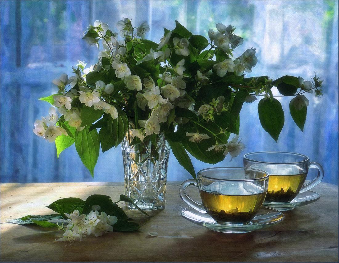 "photo ""***"" tags: still life, flowers, light, summer, настроение"