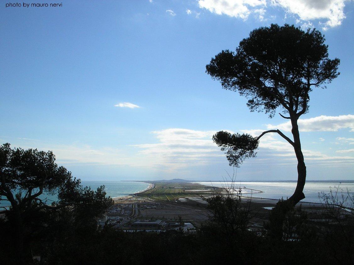 """фото """"Sète, south of France"""" метки: пейзаж,"""