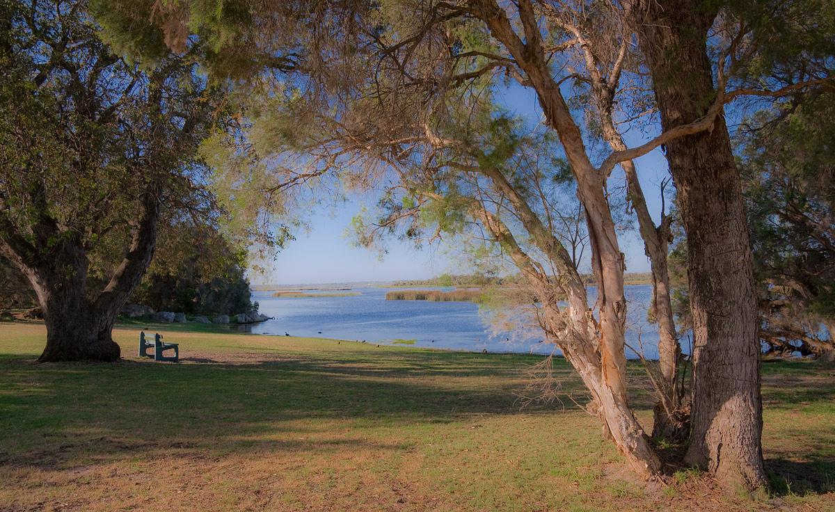 """фото """"Evening at the lake"""" метки: пейзаж, trees, view, вода, небо, озеро"""