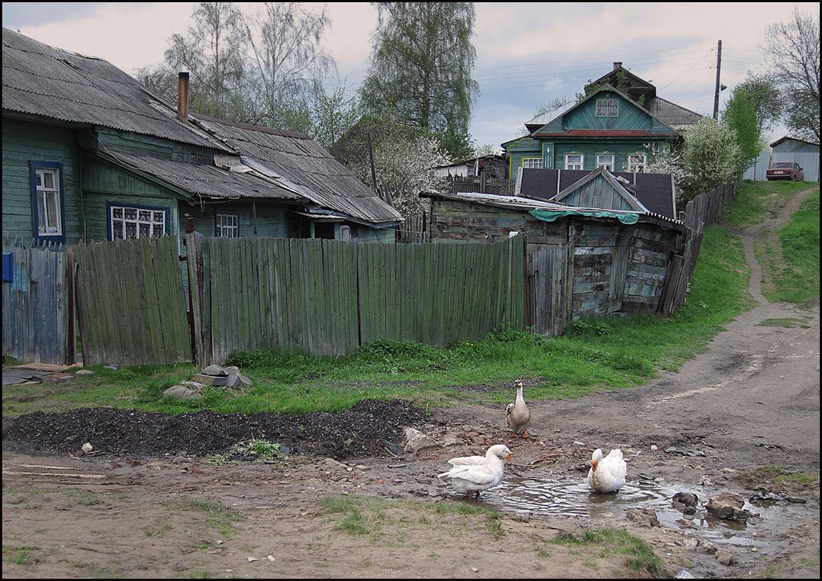 """фото """"Неяркая весна"""" метки: разное,"""