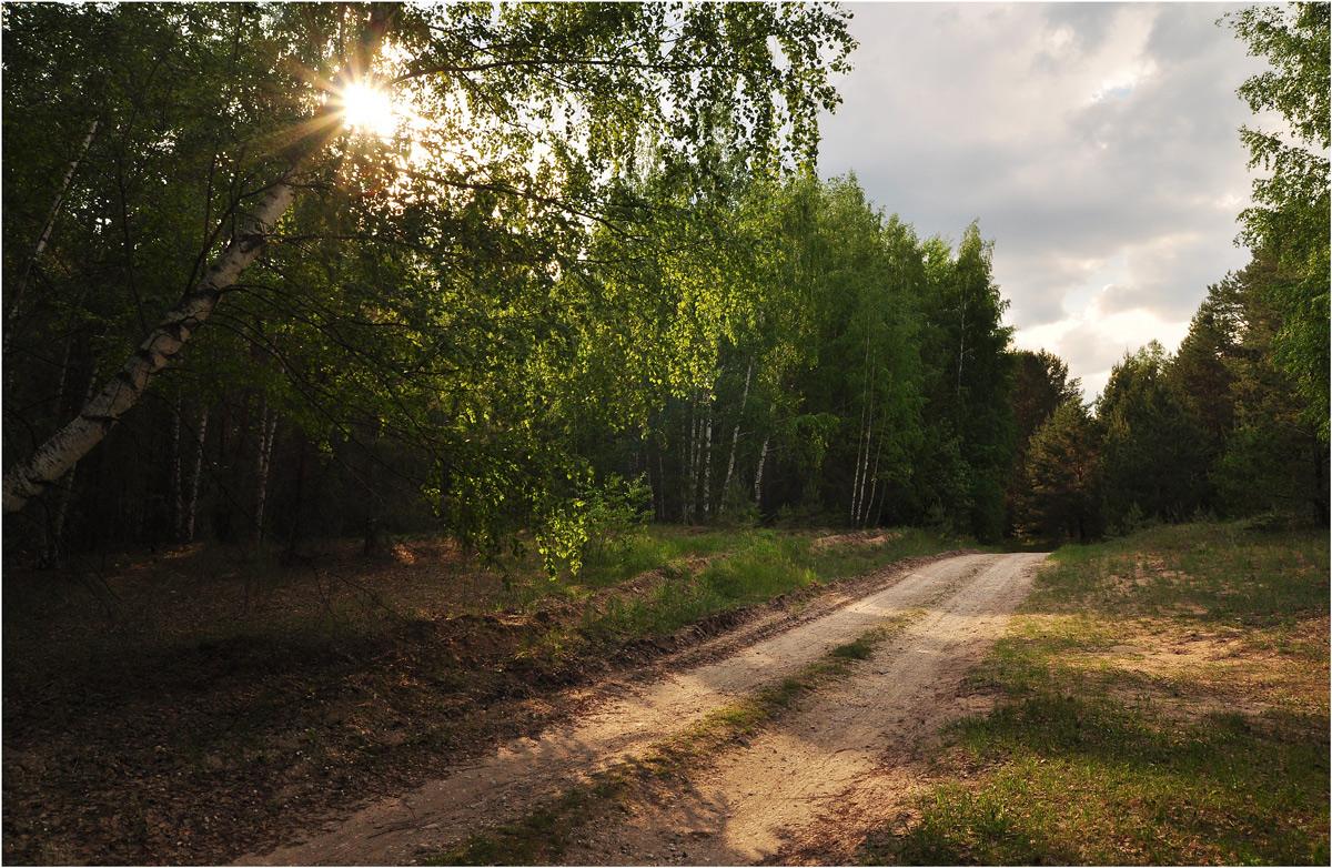 """фото """"На закате"""" метки: пейзаж, природа, путешествия,"""