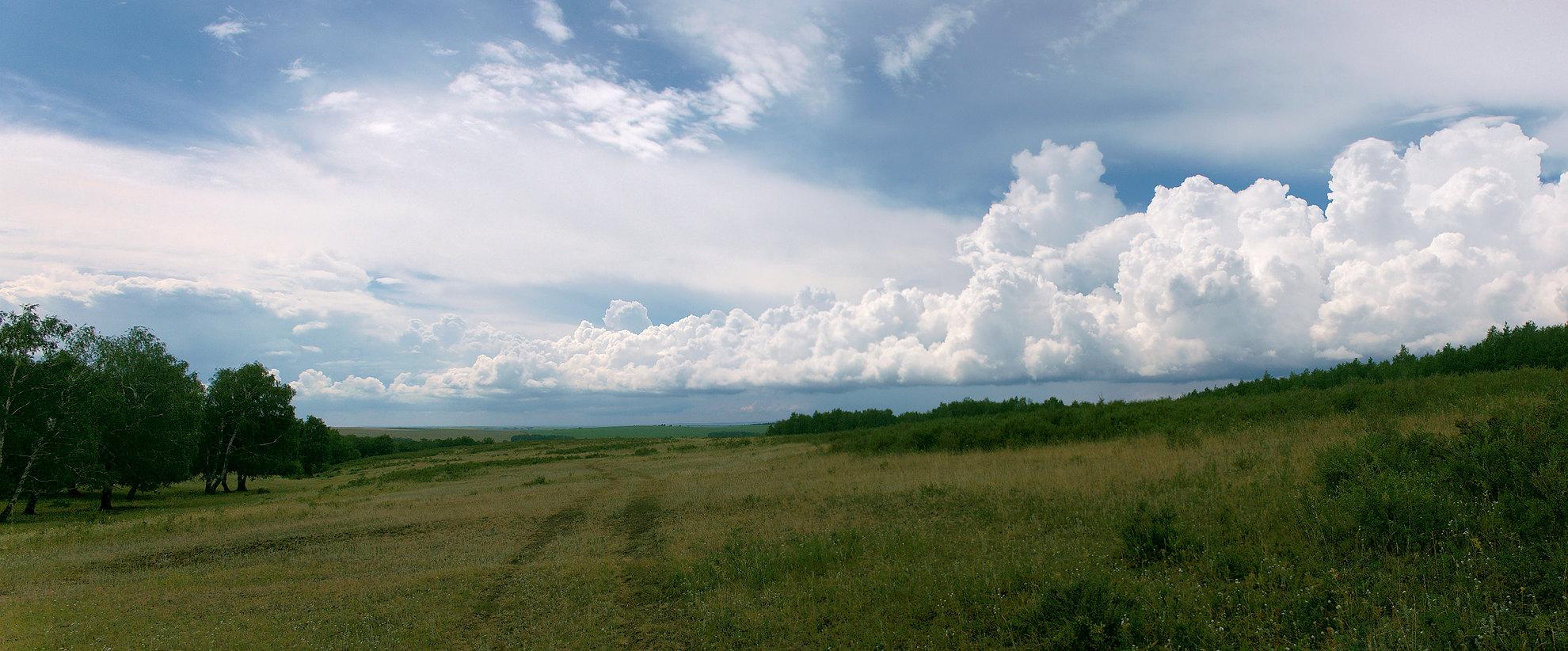 """фото """"Облака."""" метки: пейзаж, панорама, лес, лето, луг, облака"""