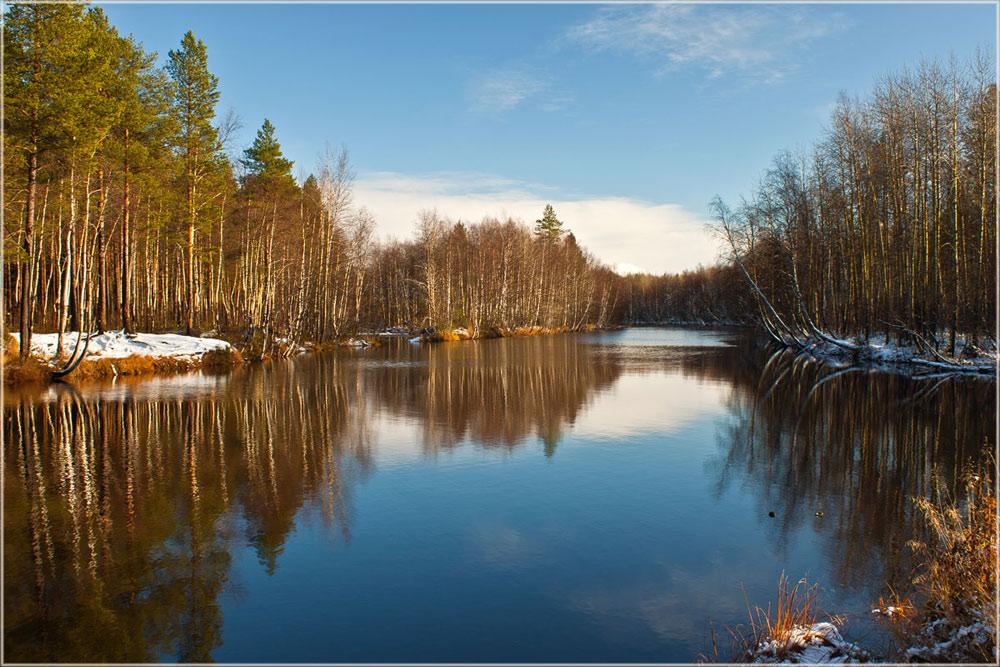 """фото """"Поздняя осень"""" метки: пейзаж, лес, небо, осень"""