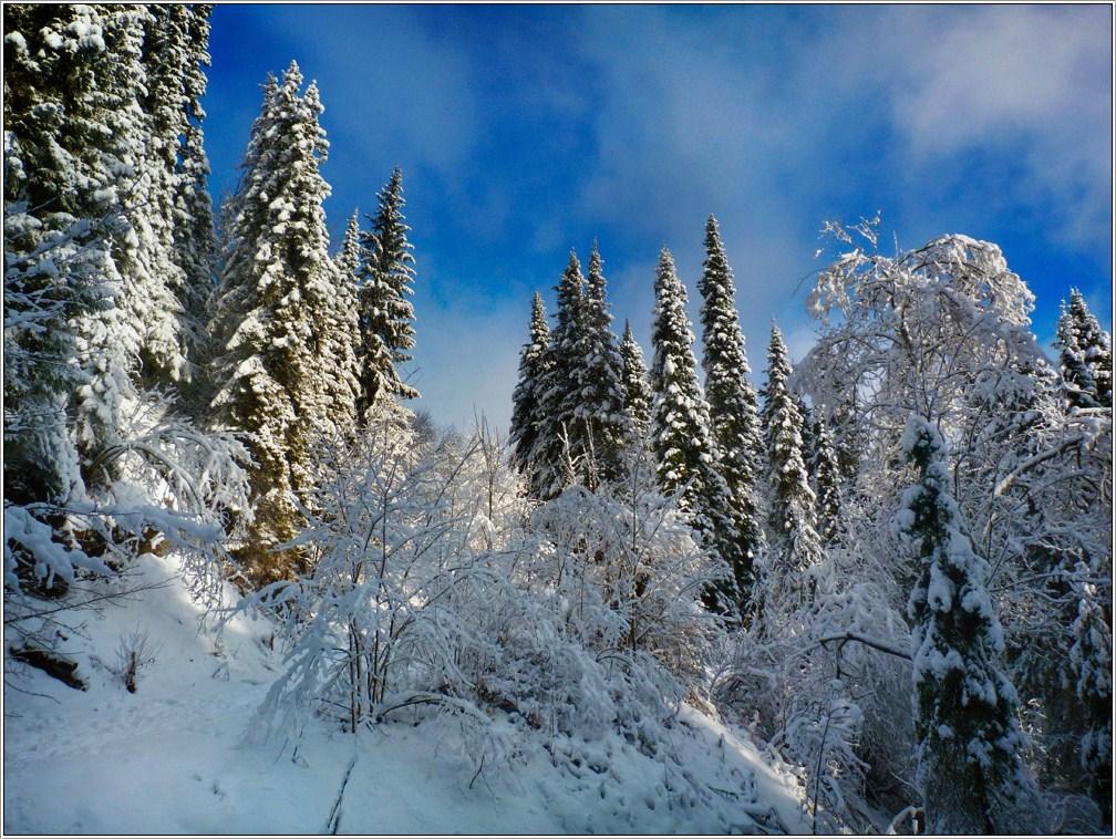 """фото """"На перевал..."""" метки: пейзаж,"""