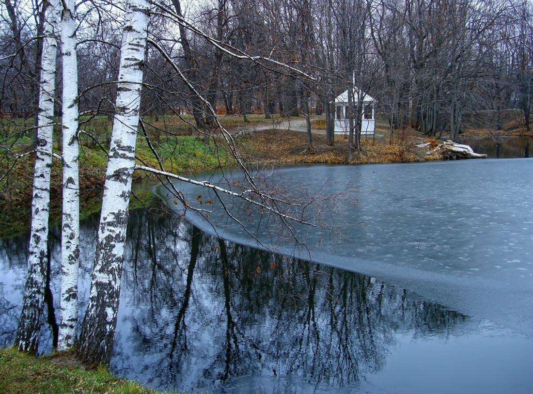 """фото """"..первый лед.."""" метки: пейзаж, Болдино, березы, вода, ноябрь, осень"""