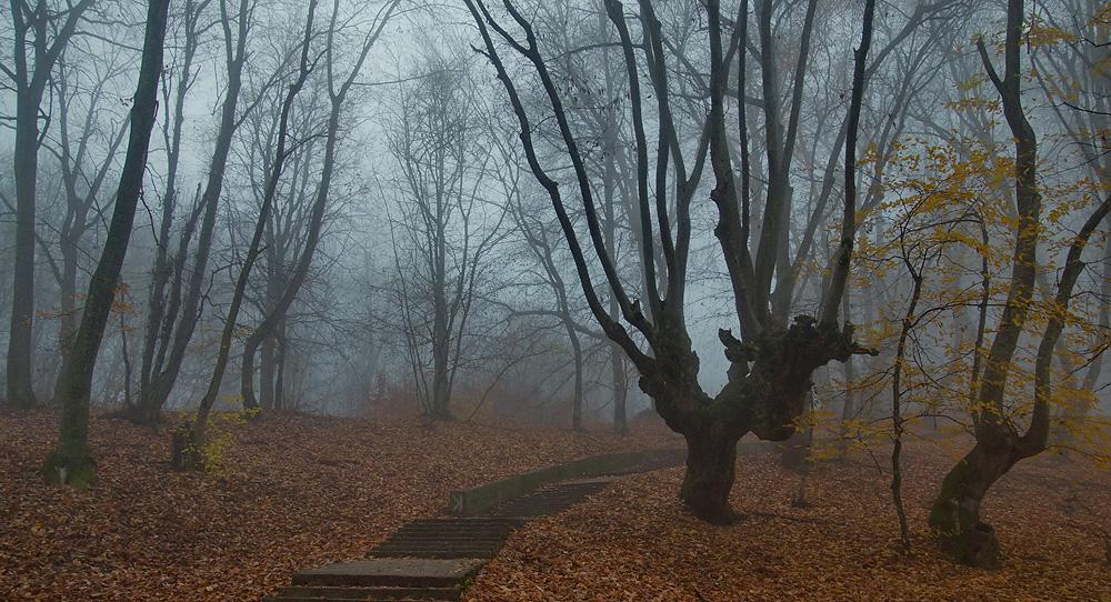 """фото """"Осенний терренкур"""" метки: пейзаж,"""