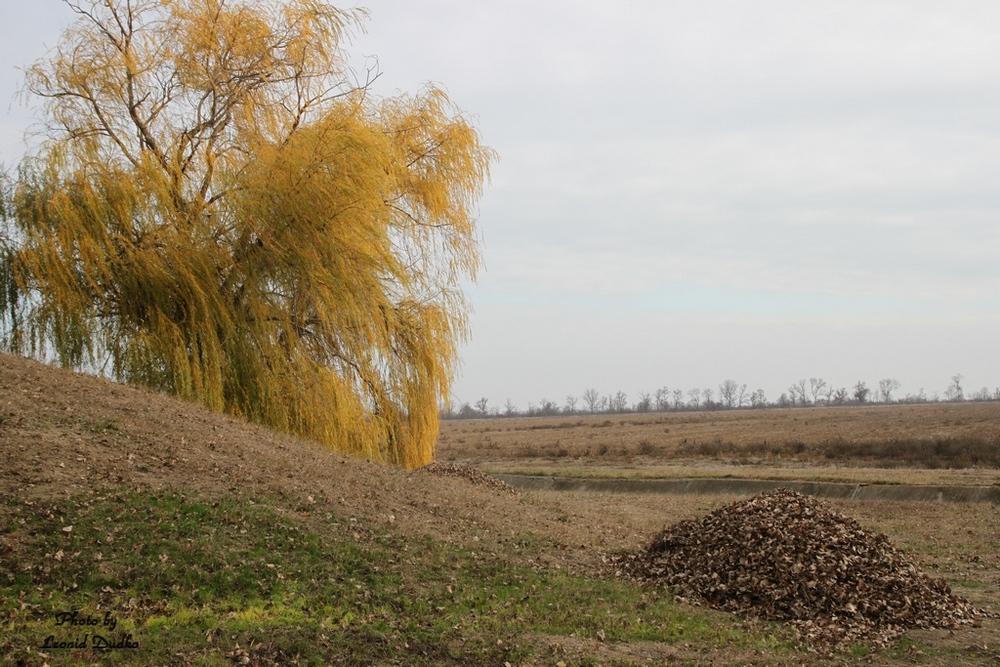 """фото """"Осень  (северный Крым)"""" метки: пейзаж, Крым, осень"""