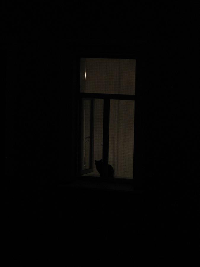 """фото """"Бессонница"""" метки: разное, ночь"""