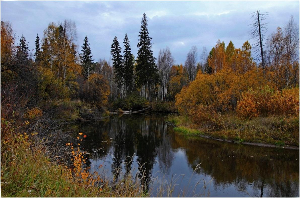 """фото """"Осенние картинки...."""" метки: пейзаж,"""