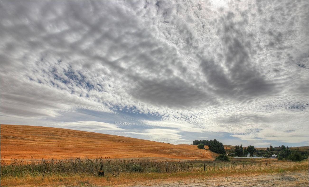 """фото """"Осеннее небо"""" метки: пейзаж, осень"""