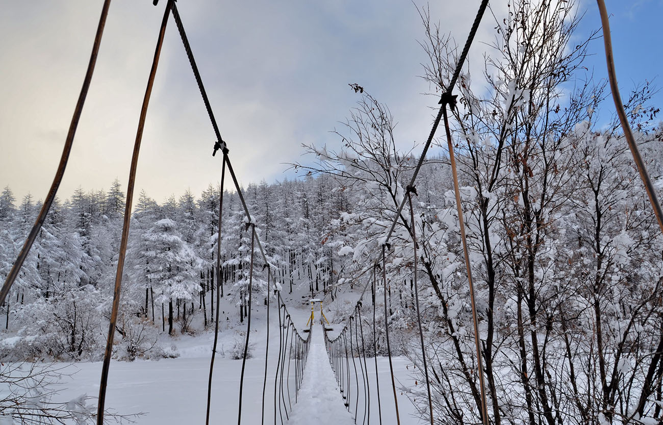 "photo ""***"" tags: landscape, bridge, forest, snow, winter"