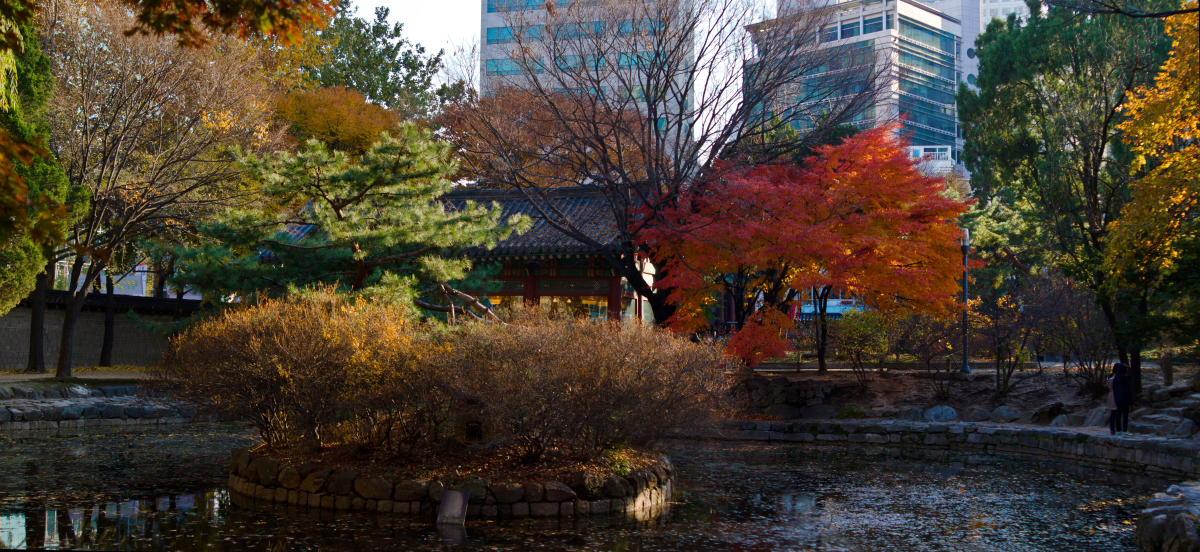 "photo ""***"" tags: landscape, Asia, autumn"