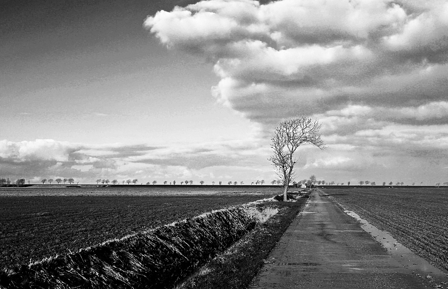 "photo ""Artifical landscape 1"" tags: landscape, nature, black&white,"