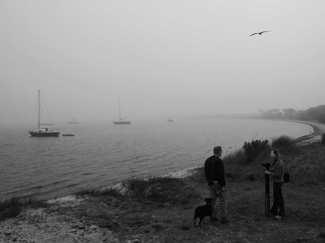 """фото """"Диалоги фотографии"""" метки: черно-белые, жанр, туман, фотографы"""