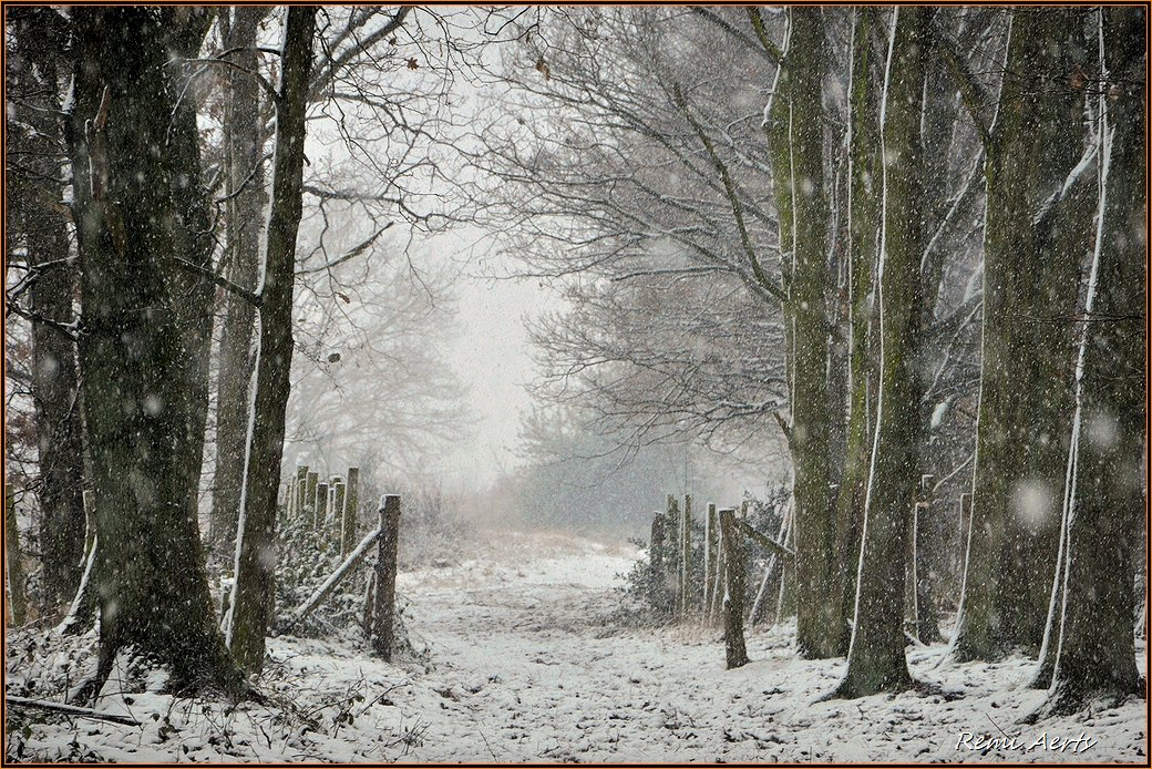 "photo ""first snow"" tags: landscape, nature, reporting,"
