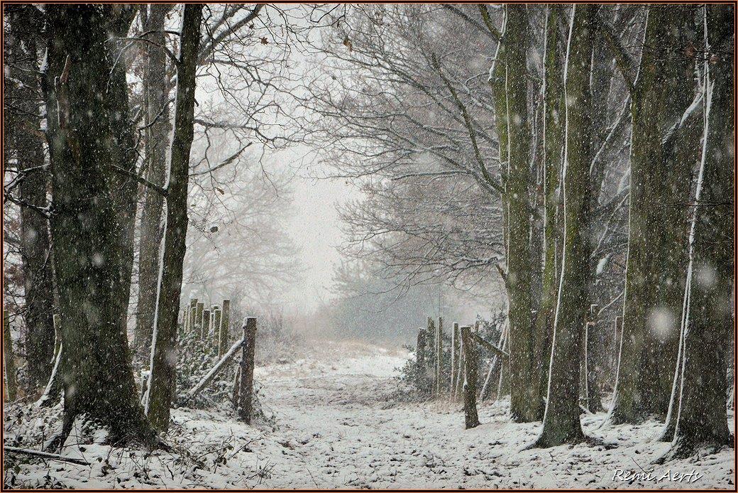 """фото """"first snow"""" метки: пейзаж, природа, репортаж,"""