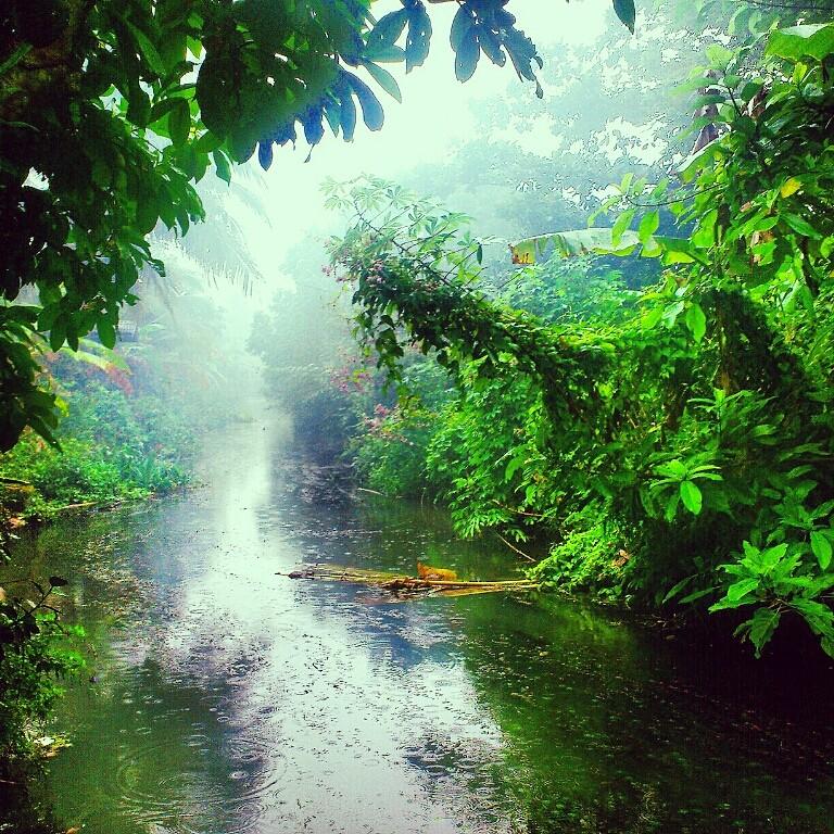 "фото ""сезон дождей...."" метки: пейзаж, путешествия, природа, Азия, вода, дождь, река, туман"