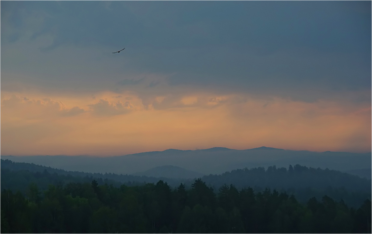 "photo ""***"" tags: landscape, travel, bird, clouds, forest, morning, mountains, sky, summer, урал"