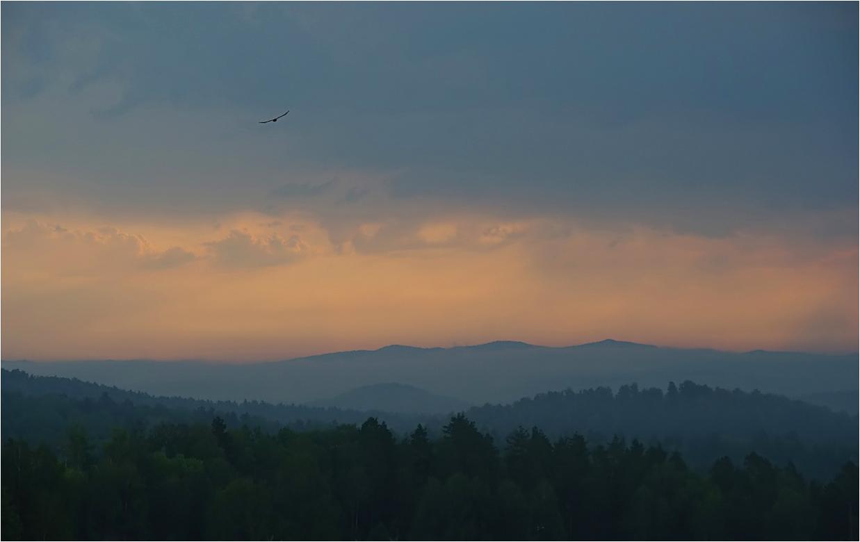 """фото """"***"""" метки: пейзаж, путешествия, горы, лес, лето, небо, облака, птица, урал, утро"""