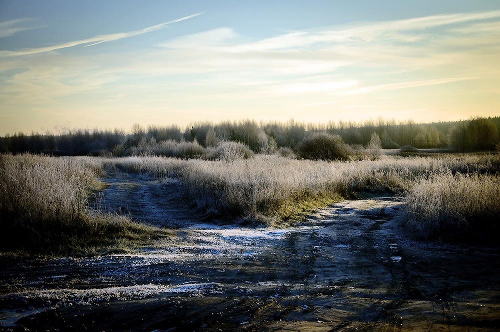 """фото """"Утренние заморозки"""" метки: ,"""