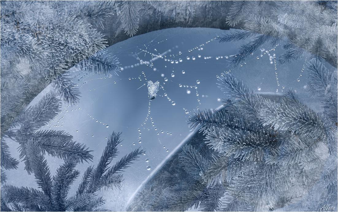 """фото """"Осенне-зимняя фантазия"""" метки: фотомонтаж, digital art, природа,"""