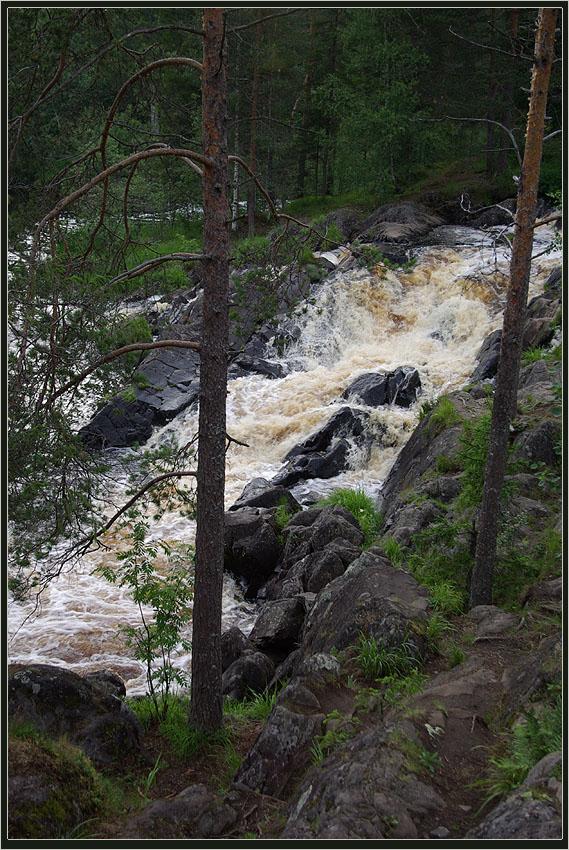 "фото ""Речка Тохмайоки"" метки: пейзаж, Речка, лес"