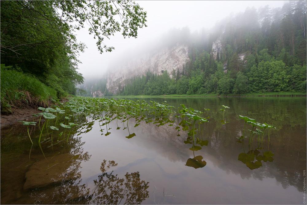 """фото """"0192_0083"""" метки: пейзаж, вода, горы, лес, лето, отражения, рассвет, река, скалы, туман"""