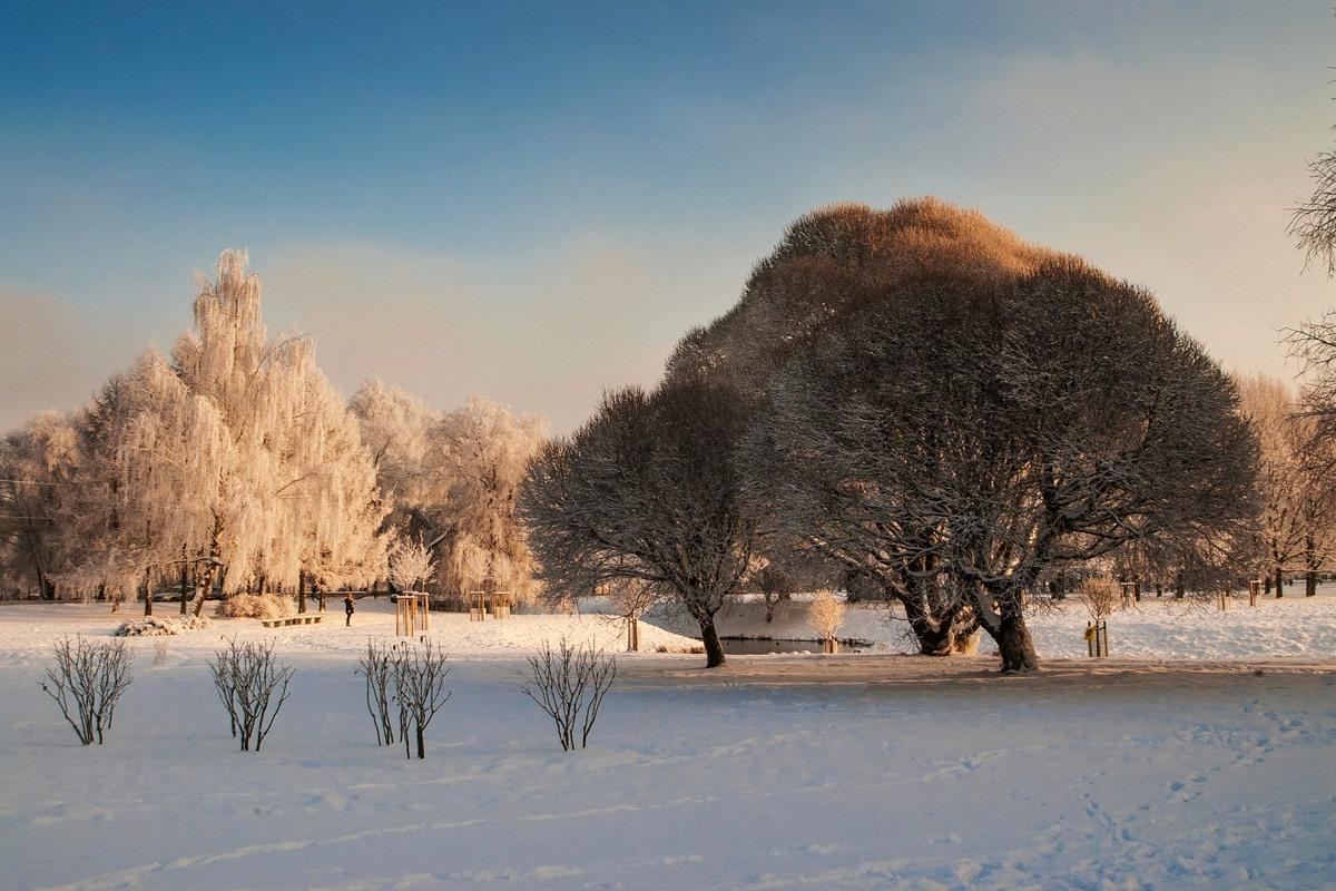 """фото """"Зимний день..."""" метки: пейзаж, зима"""