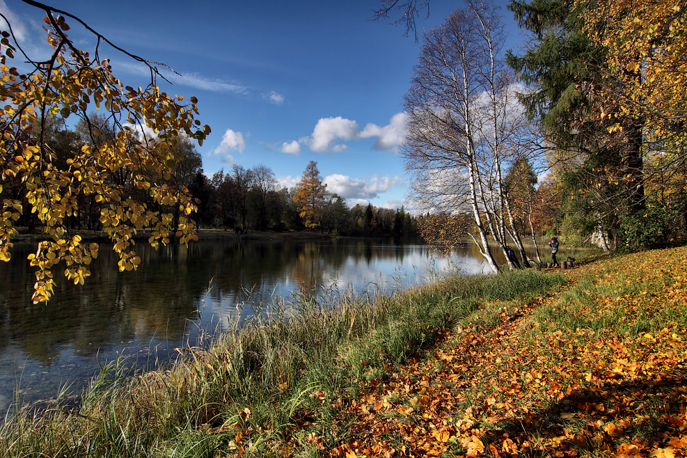 "фото ""***"" метки: пейзаж, вода, красиво, листья, осень"