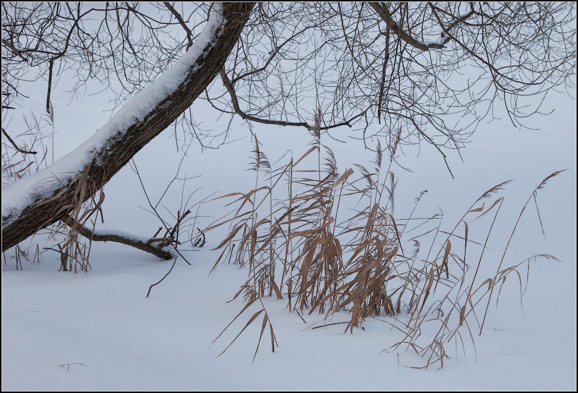 """фото """"зима"""" метки: природа, пейзаж,"""