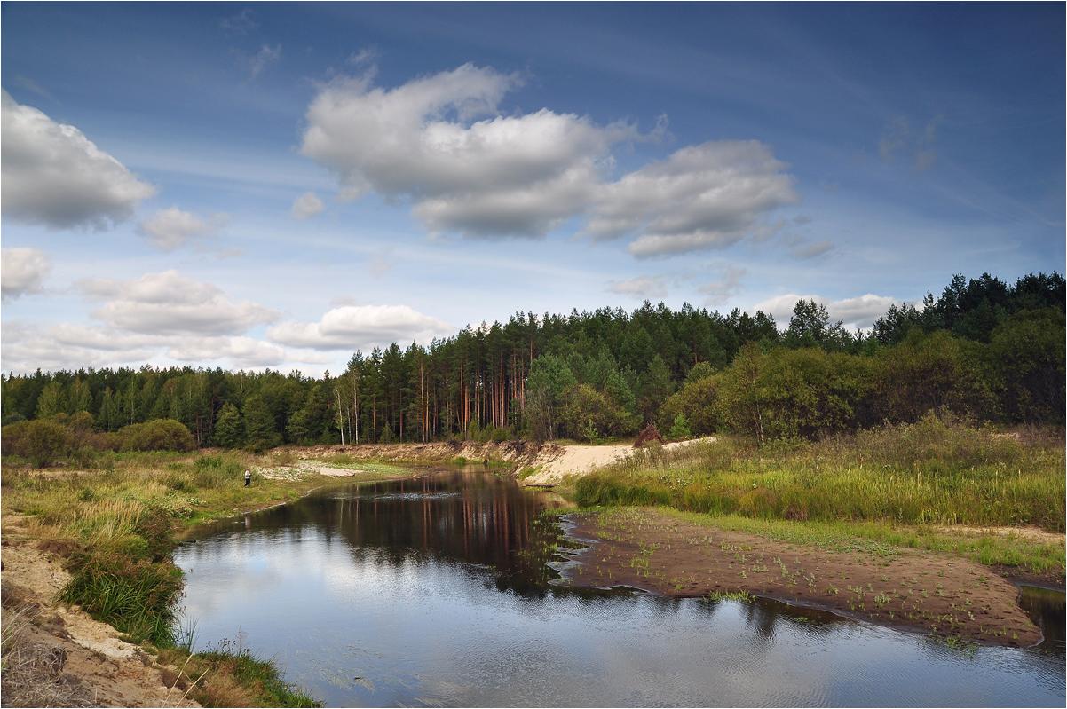 """фото """"Пролетевшее лето"""" метки: пейзаж, природа, березы, вода, ели, лес, лето, облака, река, трава"""