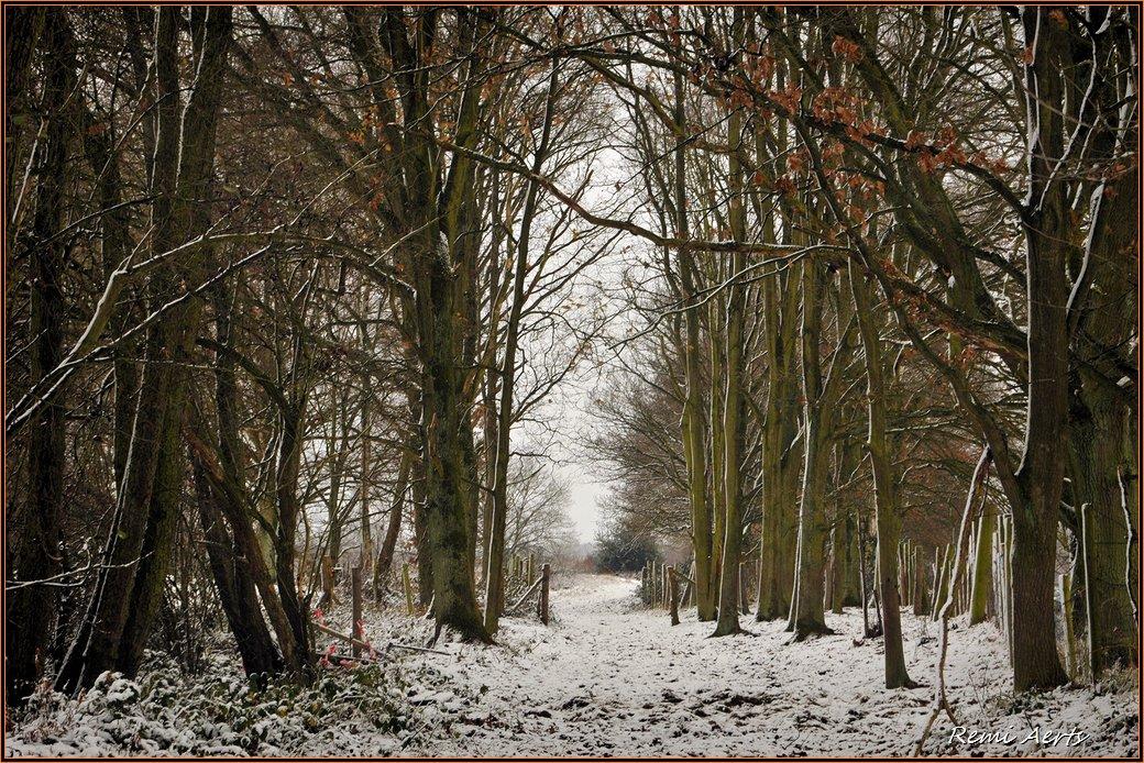 "photo ""***"" tags: landscape, nature, winter"